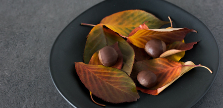 Chocolate Chestnuts