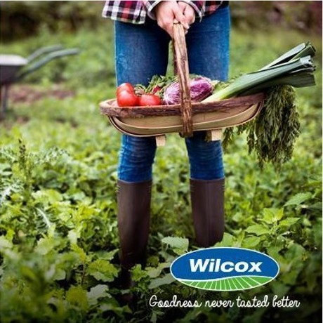 Wilcox - AS Wilcox & Sons Ltd